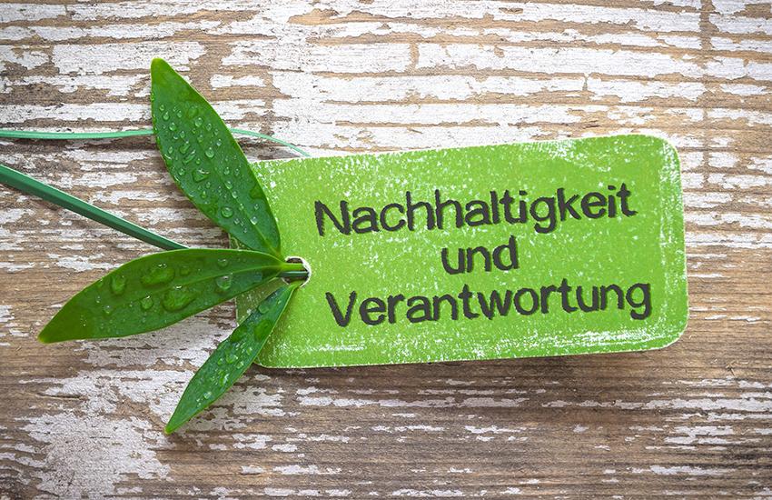 Nachhaltiges Wirtschaften bei Elektro Breitling