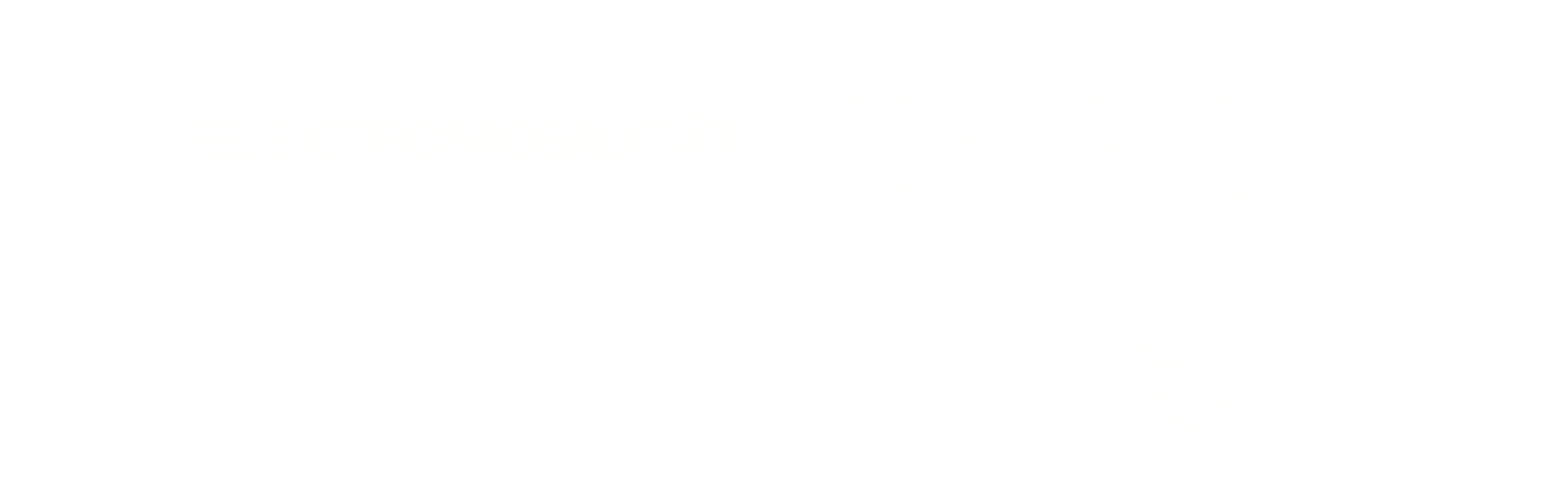 Text_Elektromobilitaet